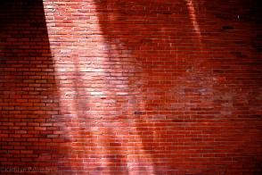 Red Brick Wall Sunshine